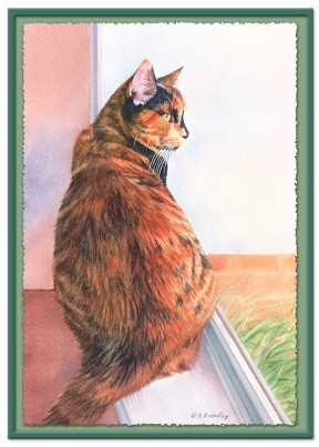 #28 Window Cat