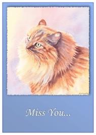 Pat's Cat
