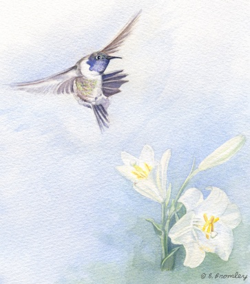 artfulpassages.com - Transitions Post.  Watercolor image:  Fly Away Hummer