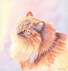 Pat's Cat - Watercolor