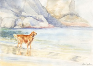 artfulpassages.com - Watercolor painting of Golden Retreiver on Oregon Beach