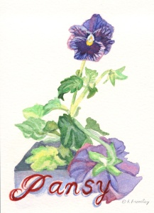 Watercolor painting Pansy with Lettering by Barbara Bromley a.k.a. artfulbarb
