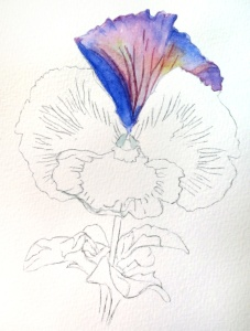 Watercolor Pansy Painting by Barbara Bromley a.k.a. artfulbarb on artfulpassages.com