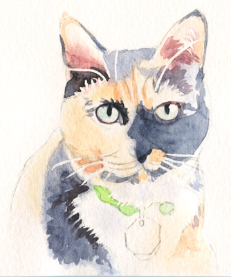 Base watercolor wash of a cat, in preparation for painting a watercolor