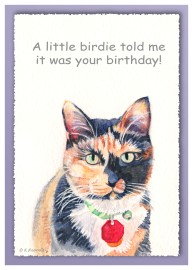 Little Bird Birthday
