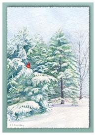 #36 Cardinal in Snow