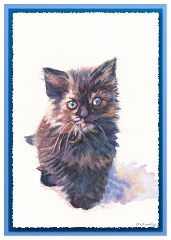 #20 Black Cat