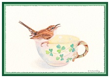 Cup-Wren-Card-MOTHERSDAY-Graphic
