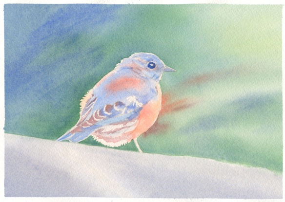 Stage 4. Paint background and bird further, in watercolor painting of a Bluebird, by artist Barbara Bromley
