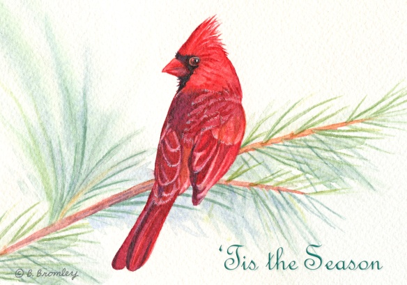 "Watercolor painting of a male Cardinal, sitting on a pine branch.  Words ""Tis the Season"" in green italic font.  Artist Barbara Bromley"