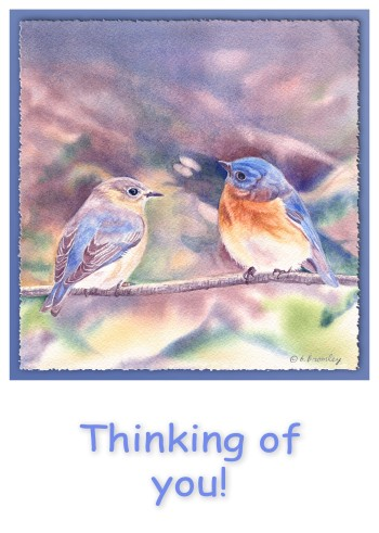 #13 Two Bluebirds Thinking