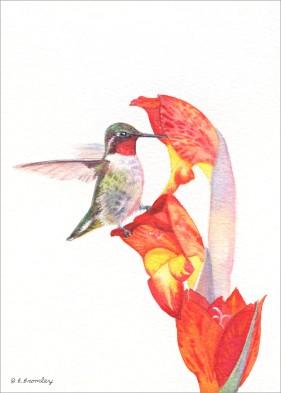 #2 Hummer w/Orange Flower
