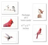 #P4 Mixed Bird Pack