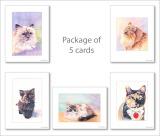 P5 Cat Pack